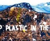 Fonte della foto: Eco-logica