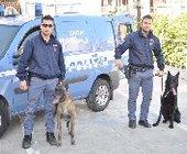 Fonte della foto: La Gazzetta Sicuracusana